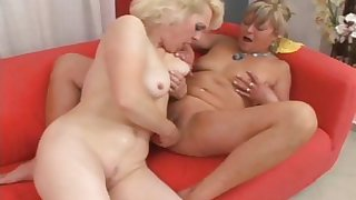 Two horny MILF have an obstacle time of their life roughly their dildos
